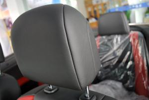 标致307 CC(进口)驾驶员头枕图片