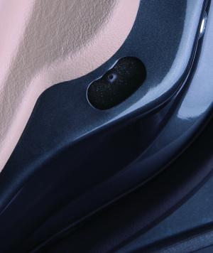 雪豹X50X50官方图图片