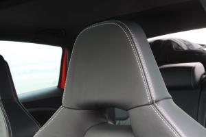 LEON(进口)驾驶员头枕图片