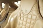 威兹曼GT(进口)驾驶员头枕图片