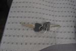 长安星光4500 钥匙(背面,按键)