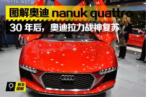 奥迪Nanuk Quattro(进口)Nanuk quattro concept图片