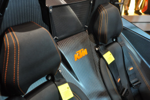 X-BOW驾驶员头枕图片