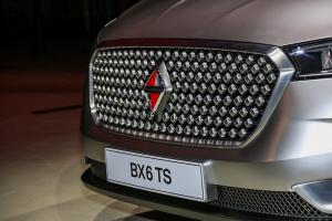 宝沃BX6 TSBX6 TS 外观-银色图片