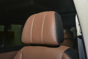 风行F700驾驶员头枕图片
