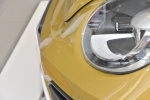 进口甲壳虫              甲壳虫 外观-沙砾黄