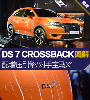 DS 7 CROSSBACK图片