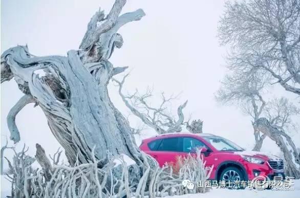 长安马自达-冬季试驾会探秘大美西域