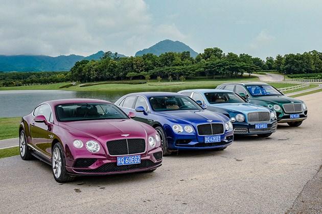 从慕尚到添越 宾利全系车型试驾体验 零距离感受奢华与运动