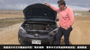 新丰田卡罗拉ECO版 低油耗高环保