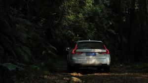 当旅行车遇上小山林 夜暗深处超自然事件频频发生