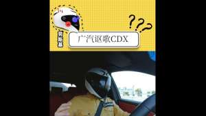 CDX行驶评价
