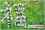 萌萌哒的熊猫收下传祺送上的大写福字