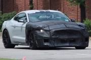 有望突破660匹马力 2019款福特野马GT500路试图曝光