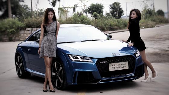 美女采访:消费者为哪辆车而来?